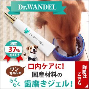 愛犬の口腔ケアジェル【ドクターワンデル】の原点