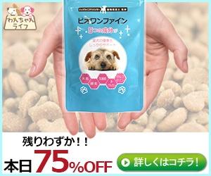 感謝の気持ちを「小型犬用スキンケアサプリ【ビオワンファイン】」にこめてプレゼントはいかがですか?